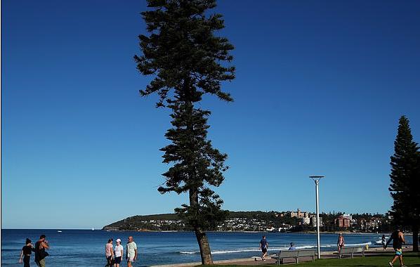 澳洲这些Suburbs的房价暴涨,你的房子也在其中吗?