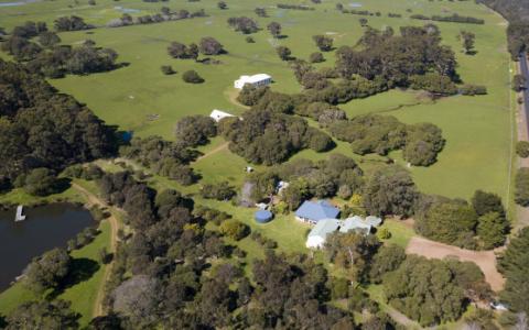 珀斯香肠大王买下西澳最大的养鹿场