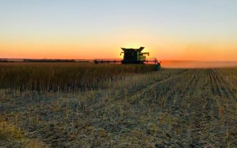 加拿大人以6亿元抢购麦格理的劳森谷物公司
