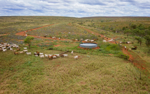 吉娜-雷恩哈特以1亿元的价格出售西澳的养牛场